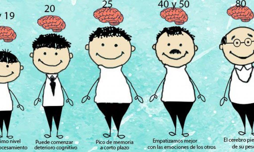 Envejecimiento del cerebro: cosas que la ciencia conoce y podrían serte útiles