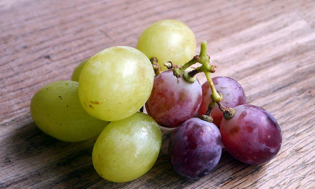 Se precisan voluntarios para estudio sobre los efectos en salud de compuestos de uva